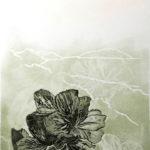 monoprint, lockdown art, Noeleen, Kleve, printmaking, artworks, exhibition. sales