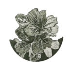 etching, lockdown art, Noeleen, Kleve, printmaking, artworks, exhibition. sales
